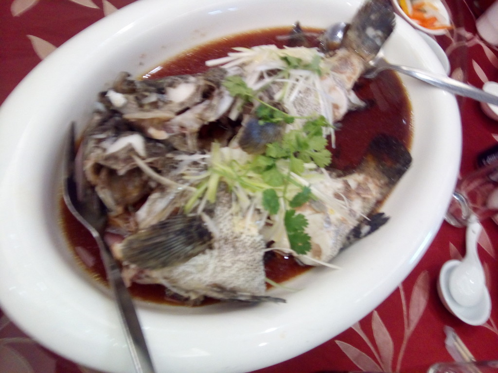 Deep Sea Garoupa (Fish) - Oriental Palace