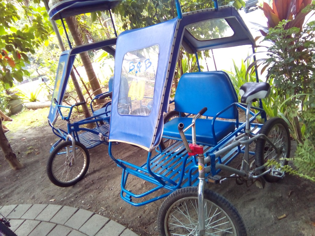 Bikes and Pedicabs are available for rent